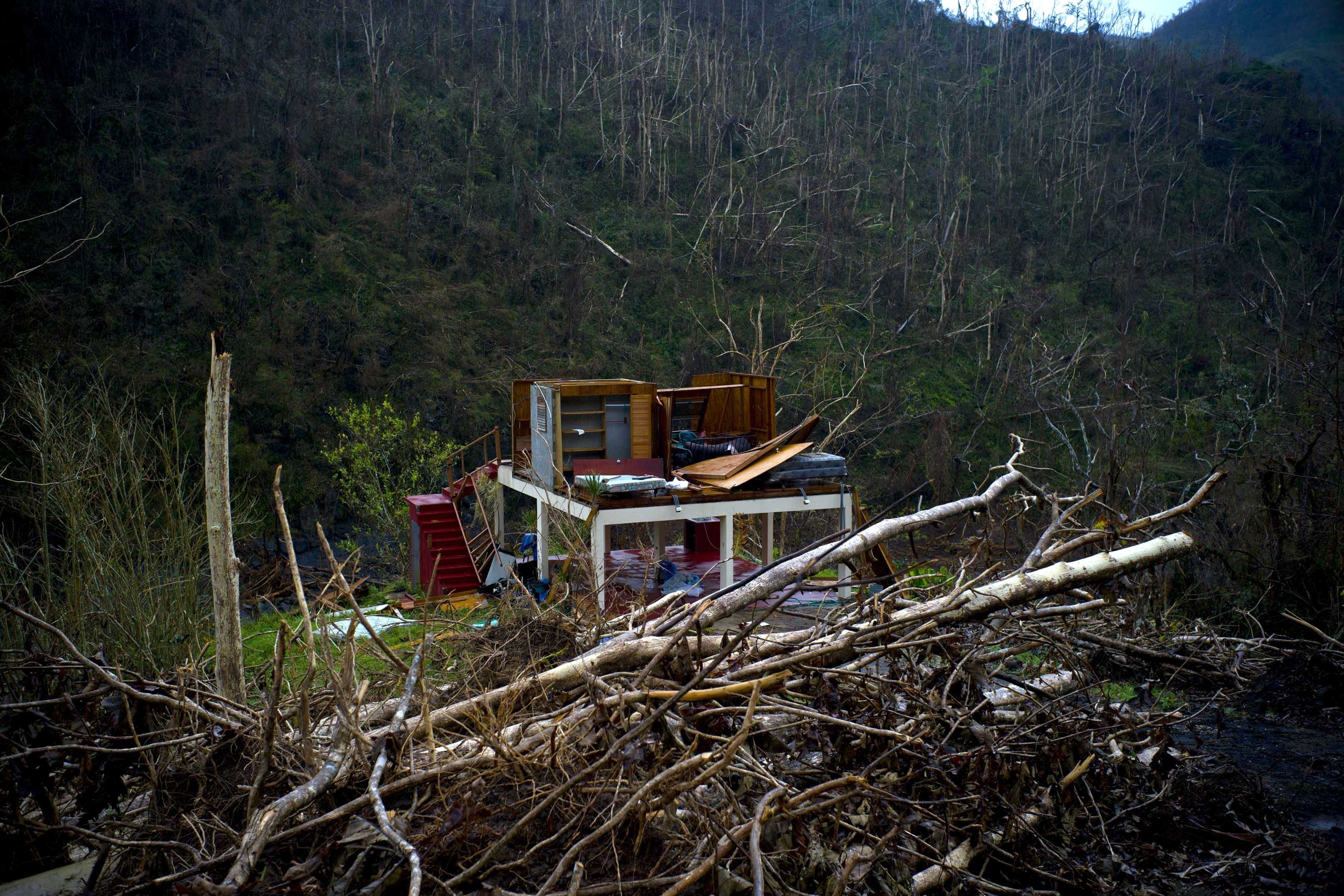 FILE - The foundation of a heavily damaged house stands amid broken trees in the mountains after the passing of Hurricane Maria in the San Lorenzo neighborhood of Morovis, Puerto Rico, Sept. 30, 2017. Environmental groups and volunteers are gathering