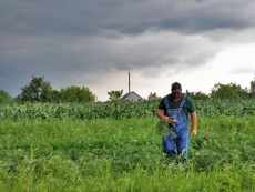 Farmer Rusty Lee supplies fresh meat and produce to the Old North Grocery Co-op.