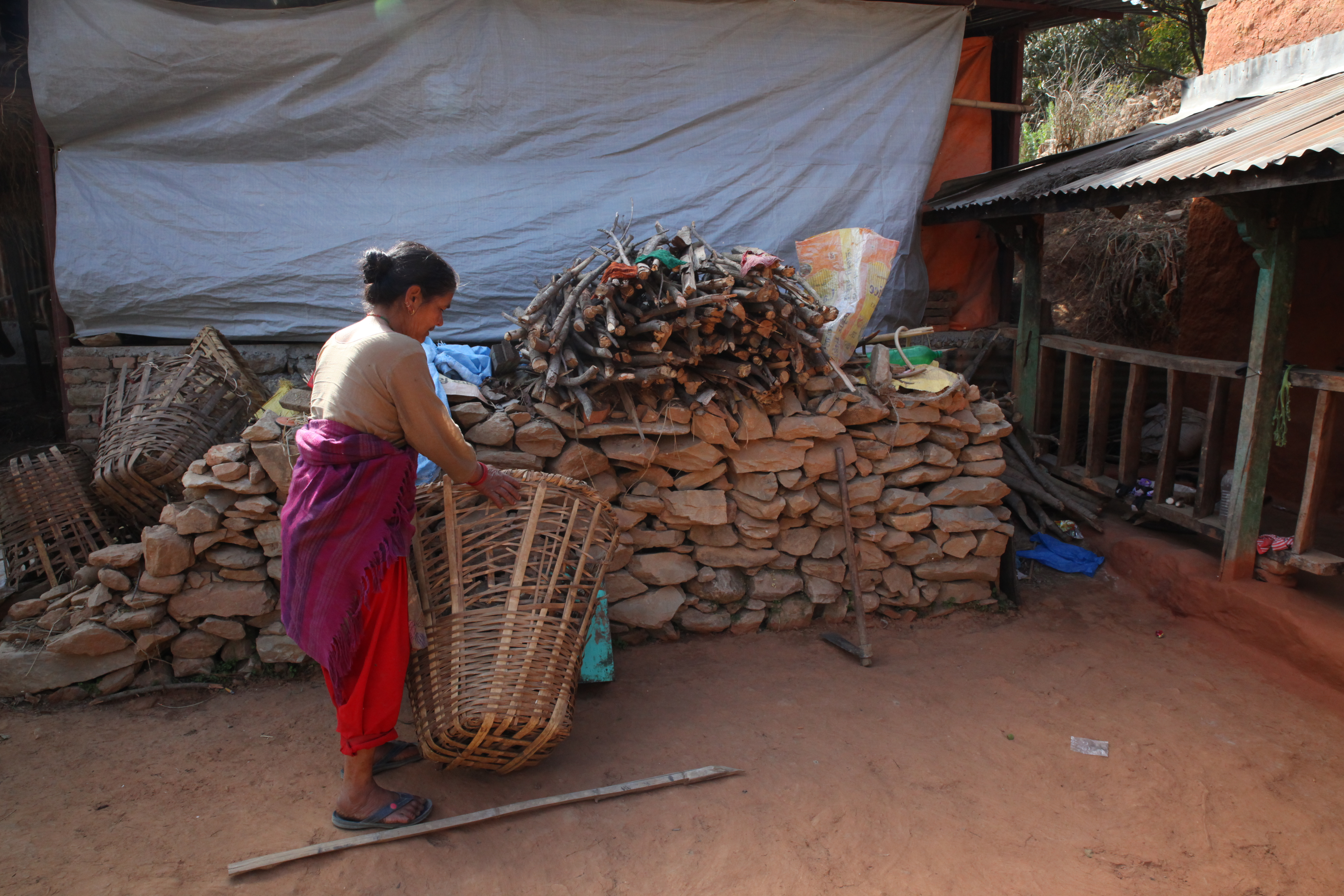 Chini Khadka arranges firewood at her small cattle farm on a remote hilltop in Bhimdhunga, Nepal, Feb. 9, 2018.