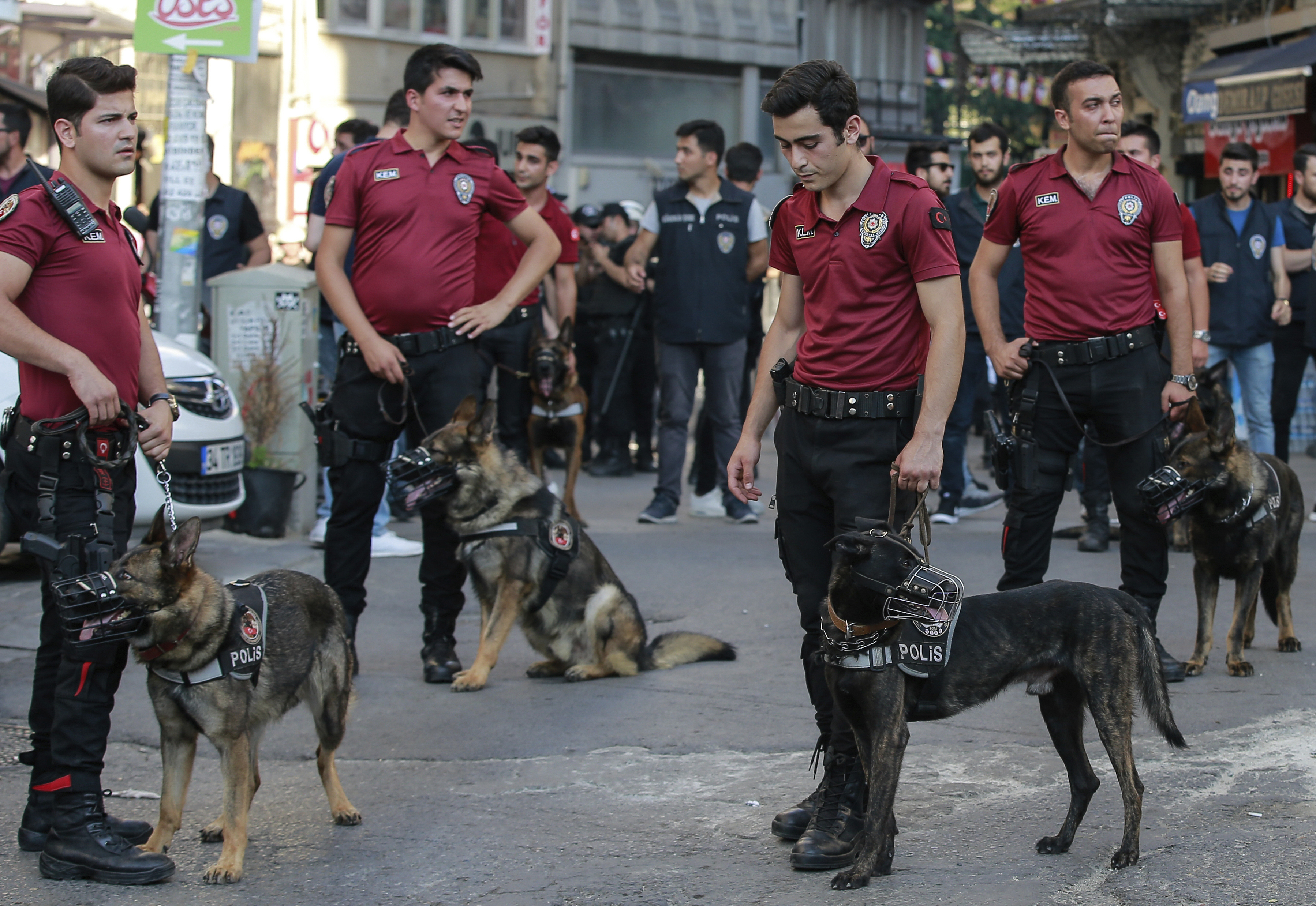 Police with dogs follow Turkey's lesbian, gay, bisexual, trans and intersex activists as they march despite a ban, in Istanbul, July 1, 2018.