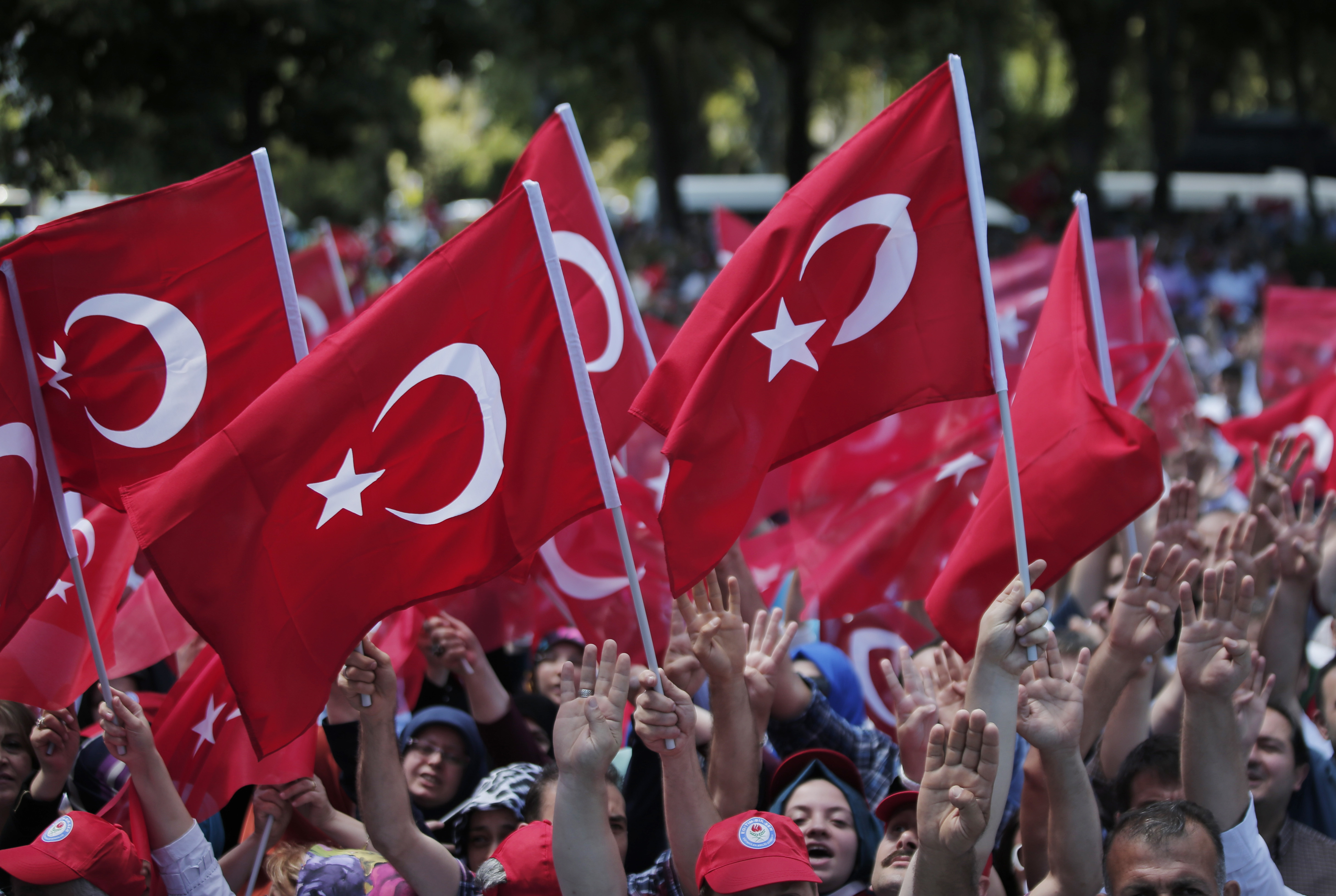 Pro-government demonstrators wave Turkish flags as they protest against the attempted coup in Istanbul, Turkey, July 19, 2016. The Turkish government accelerated its crackdown on alleged plotters of the failed coup against President Recep Tayyip Erdo...