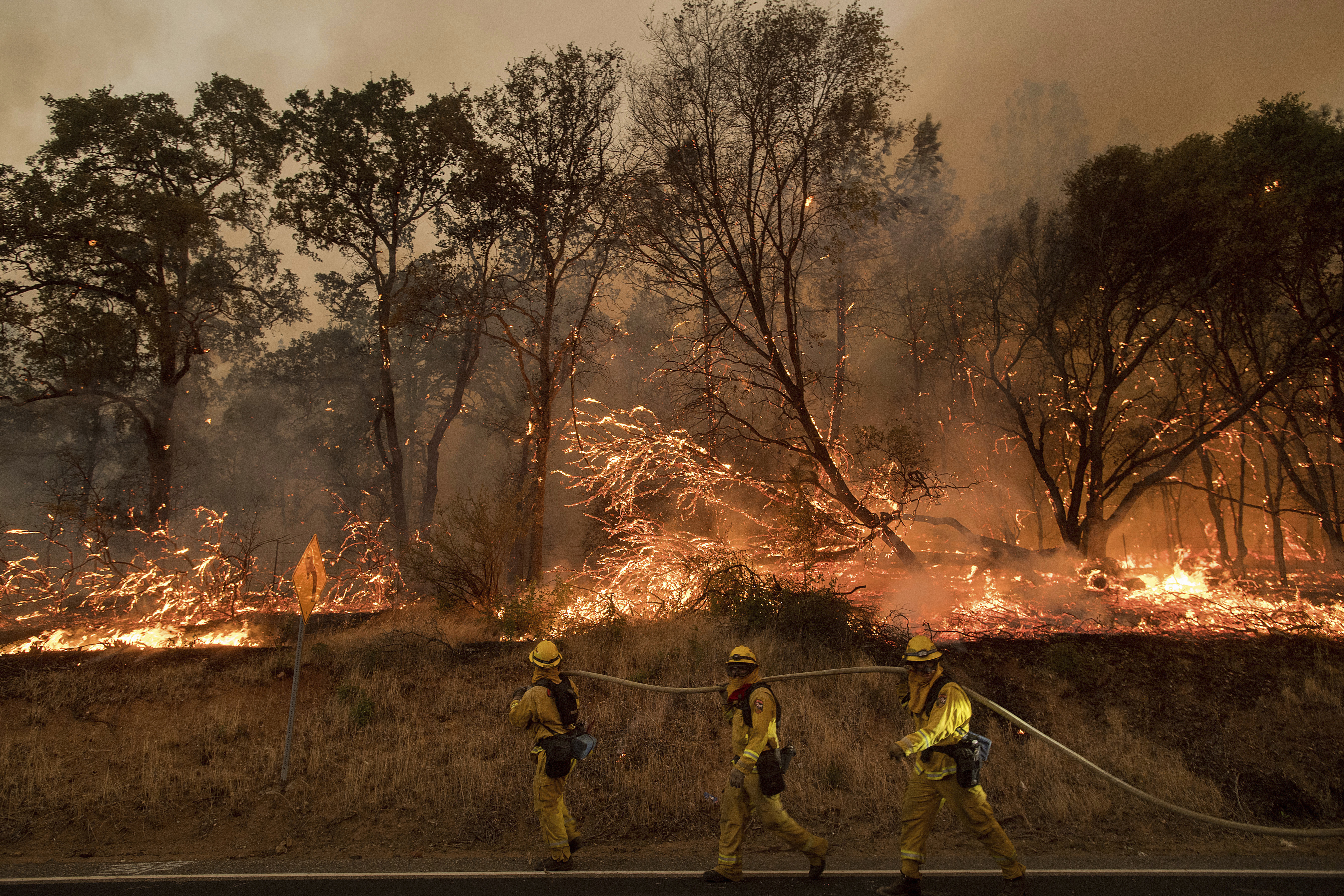Firefighters battle a wildfire as it threatens to jump a street near Oroville, Calif., on Saturday, July 8, 2017.