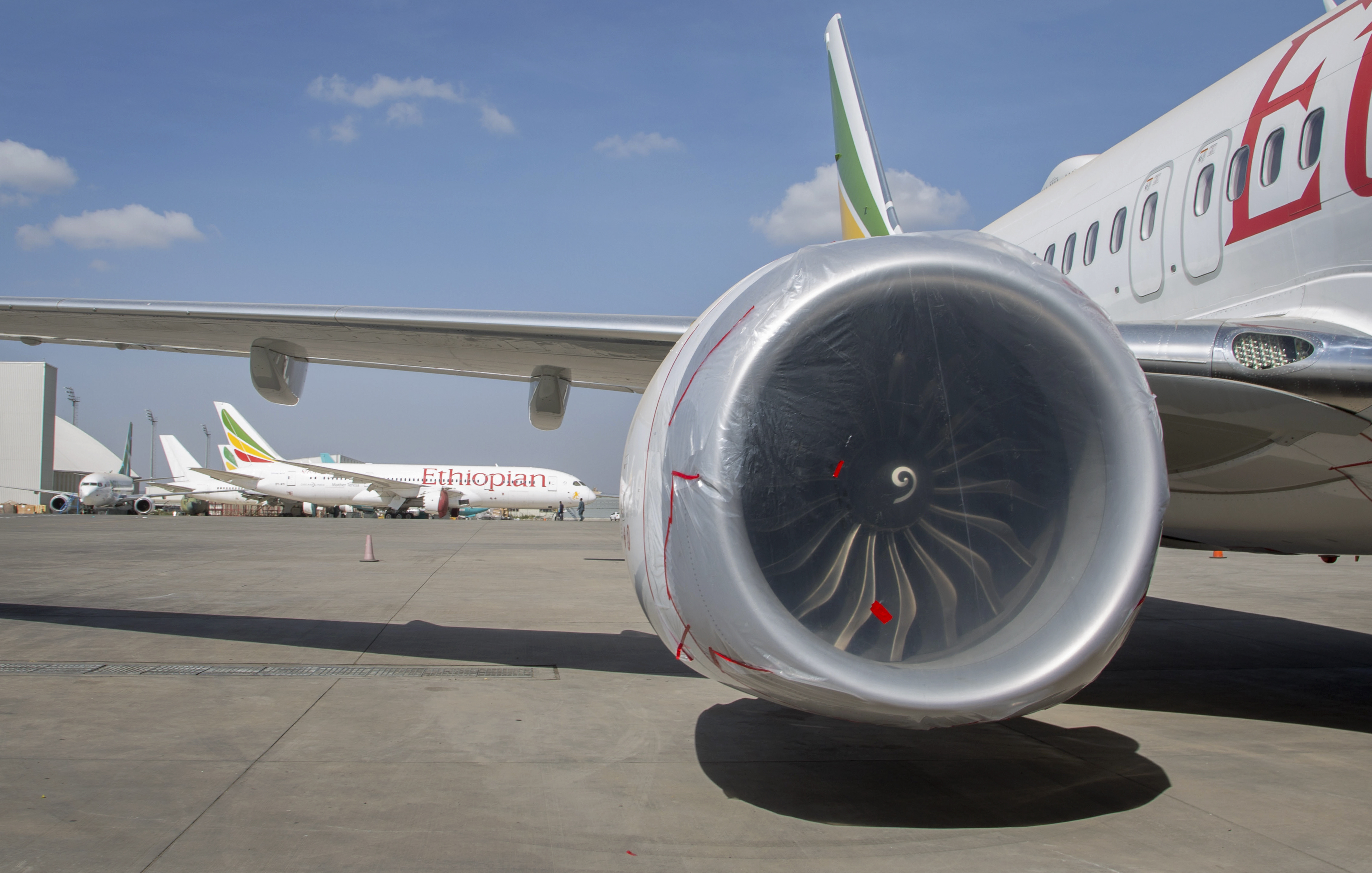 Other Ethiopian Airlines aircraft are seen in the distance behind an Ethiopian Airlines Boeing 737 Max 8 as it sits grounded at Bole International Airport in Addis Ababa, Ethiopia, March 23, 2019.