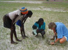 Local people in Namibia help in the search for plant diversity. Local names and plant uses can often be obtained from people living in the area.