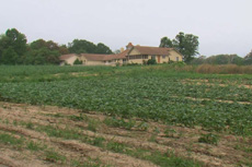 These 26 hectares of land are leased to the Volunteer Farm of Shenandoah to help provide fresh fruits and vegetables for the hungry.