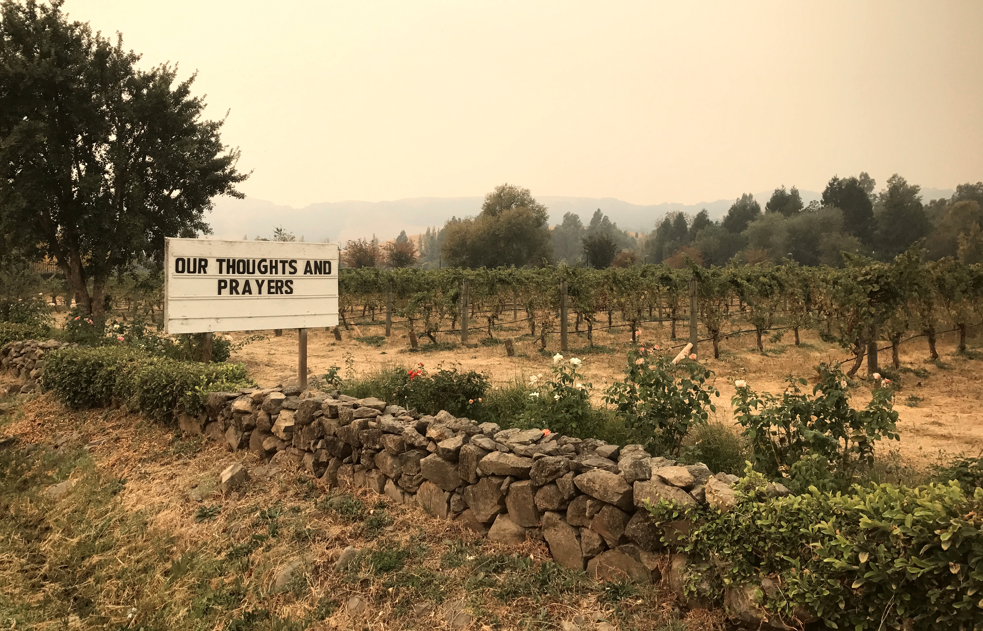 A sign is seen outside the Cline Cellars vineyards as smoke from various wildfires fills in the distance in Sonoma, California, Oct. 11, 2017.