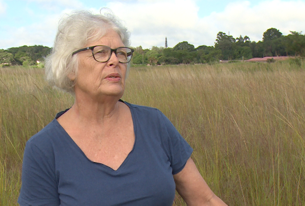Dorothy Wakeling of the conservation group Harare Wetlands Trust says people are disturbing wetlands which are supposed to be gradually releasing water into the city's water bodies.