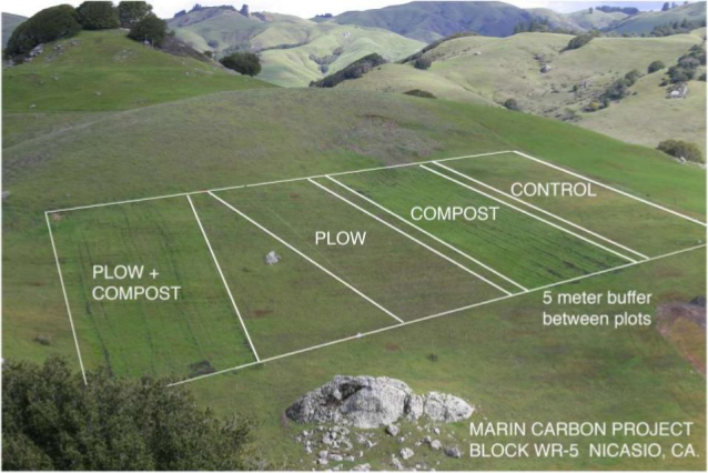 The plan for the original research block to test compost's carbon retention potential on John Wick's Nicasio Native Grass Ranch.