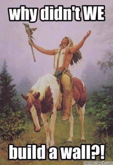 Memes such as this one, showing a Native American lamenting the coming of European colonialists, are springing up across social media sites.