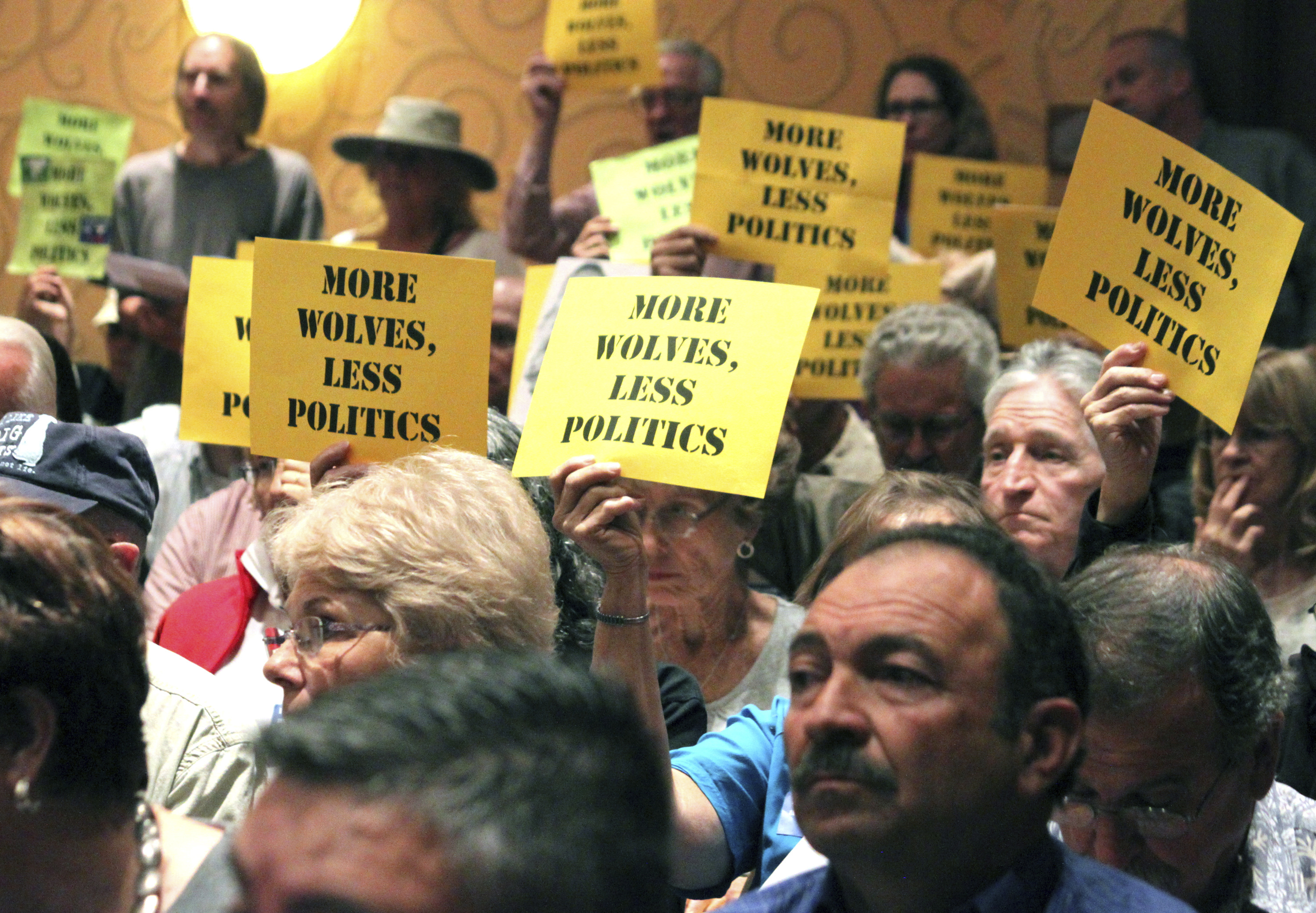 FILE - People hold signs in support of the Mexican gray wolf during a meeting of the New Mexico Game Commission in Albuquerque, New Mexico, Sept. 29, 2015.