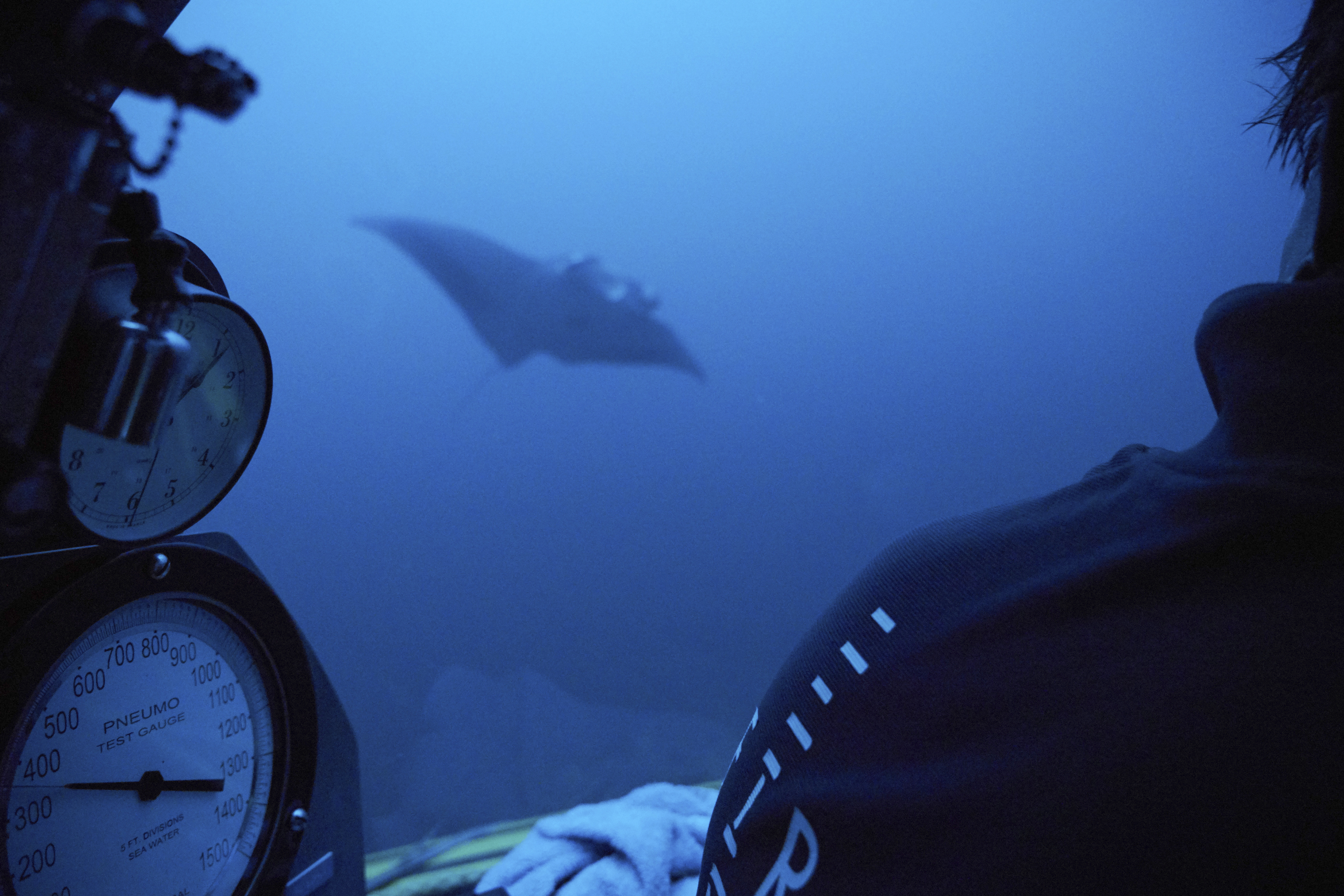 A manta ray swims near the submersible during a dive off the coast of the island of St. Joseph in the Seychelles, April 8, 2019. For more than a month researchers from Nekton, a British-led scientific research charity, have been exploring deep below ...