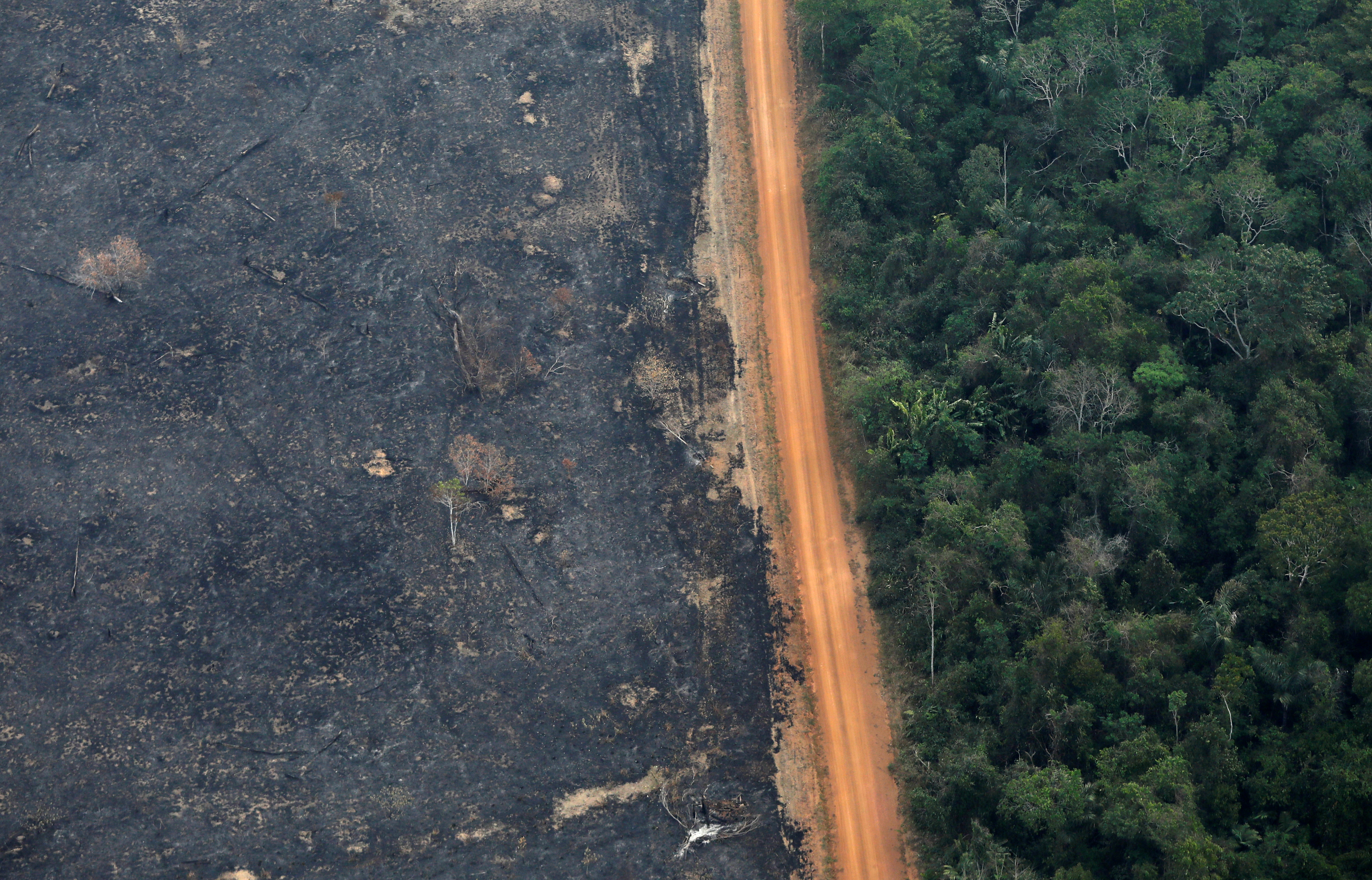 Brazil Amazon Deforestation Soars To 11 Year High Under Bolsonaro