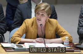United States U.N. Ambassador Samantha Power speaks during an U.N. Security Council meeting on the Ukraine crisis, March 13, 2014