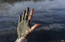 FILE - Amy Adams, North Carolina campaign coordinator with Appalachian Voices, shows her hand covered with wet coal ash from the Dan River swirling in the background as state and federal environmental officials continued their investigations of a spi