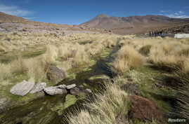 FILE - Water runs in one of the springs in Silala, south of La Paz, March 29, 2016. Chile on Monday filed a lawsuit against neighbor Bolivia, which has long insisted that it should be compensated for use of water flowing down the Silala River into Ch