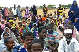 Newly arrived refugees from Somalia fleeing war and hunger gather near the Hagadera refugee camp in Dadaab, in Kenya's northeastern province, Dec 8, 2010 (File Photo)