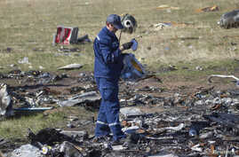 An Emergencies Ministry member searches for belongings at the site where the downed Malaysia Airlines flight MH17 crashed, near the village of Hrabove (Grabovo) in Donetsk region, eastern Ukraine, October 13, 2014.
