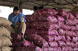An Indian worker sits on sacks of onions at a wholesale market on the outskirts of Jammu, Dec. 22, 2010