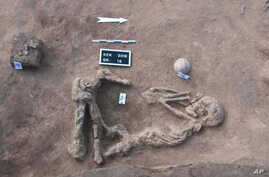 This undated handout photo provided by the Egyptian Antiquities Authority, shows a skeleton, at the Kom al-Kholgan archaeological site, about 140 kilometers (87 miles) north of Cairo, Egypt.