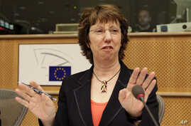 EU Foreign Policy Chief Catherine Ashton, 08 Nov 2010
