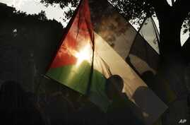 An Egyptian woman waves the Palestinian flag in solidarity with Gaza during a protest against Israel's military operation in the region, in Cairo, Egypt, November 15, 2012.