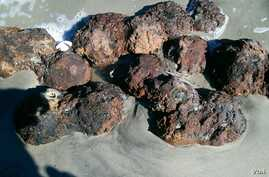 A cluster of Civil War-era cannonballs was unearthed by the powerful hurricane Matthew. (Charleston Co. Sheriff's Dept.)