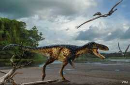 Artist Todd Marshall reconstructs Timurlengia euotica as it might have looked 90 million years ago. (Image courtesy of Todd Marshall)