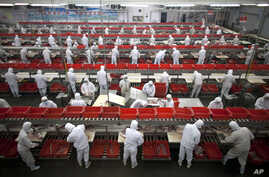 FILE - Employees work on production lines at a pork processing plant owned by Henan Shuanghui Group Ltd., in Luohe, in central China's Henan province.