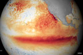 This image shows the satellite sea surface temperature departure for the month of October 2015, where orange-red colors are above normal temperatures and are indicative of El Niño.