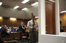Forensic investigator Johannes Vermeulen, with a cricket bat in hand, demonstrates on a mock-up toilet and door details of how the door could have been broken down, during the trial of Oscar Pistorius in Pretoria, South Africa, Wednesday, March 12, 2