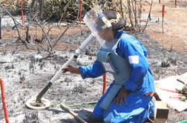 Landmines were responsible for many thousands of deaths and injuries in African countries. Here, a demining operation in Mozambique.