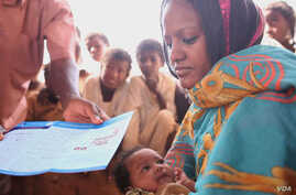 Gavi Alliance helps provide many types of immunization in African countries. (GAVI)