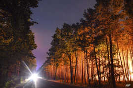 A forest is lighted by wildfires near the village Klausdorf, about 85 kilometers (53 miles) south of Berlin, Aug. 24, 2018.