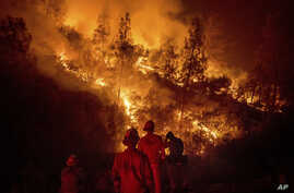 Firefighters monitor a backfire while battling the Ranch Fire, part of the Mendocino Complex Fire near Ladoga, California.