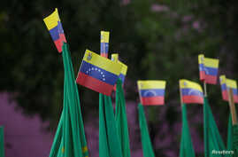 Venezuela flags during a protest of civil organizations in support of Venezuelan President Nicolas Maduro's government, in Mexico City, Mexico, April 19, 2017.