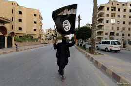 """A member loyal to the Islamic State in Iraq and the Levant (ISIL) waves an ISIL flag in Raqqa June 29, 2014. The offshoot of al Qaeda which has captured swathes of territory in Iraq and Syria has declared itself an Islamic """"Caliphate"""" and called on f"""