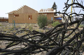 In this Aug. 9, 2018 photo, a burned tree sits in the foreground of Cheri Sharp's new home under construction in Santa Rosa, Calif. After she lost her home in the deadly October 2017 wildfires, Sharp discovered her insurance policy didn't cover the a