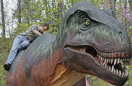 Patrick Cupp puts the finishing touches on a robotic model of a Tyrannosaurus rex at the Cleveland Metroparks Zoo in Cleveland, April 2010.