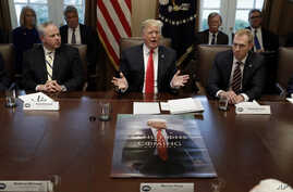 President Donald Trump speaks during a cabinet meeting at the White House, Wednesday, Jan. 2, 2019, in Washington.  David Bernhardt, Acting Secretary of Interior is left and Patrick Shanahan, Acting Secretary of Defense is right.
