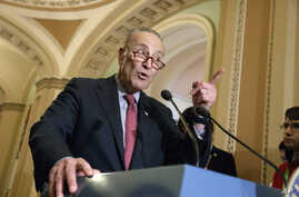 FILE - Senate Minority Leader Chuck Schumer, D-N.Y., speaks with reporters at the Capitol in Washington, March, 14, 2017.