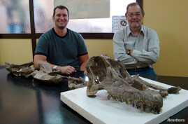 Dr. Ruben Martinez (R), from the Universidad Nacional de la Patagonia San Juan Bosco, and Dr. Matt Lamanna from the Carnegie Museum of Natural History, pose with the skull and neck bones of the new titanosaurian dinosaur species Sarmientosaurus musac