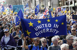 Anti Brexit campaigners carry flags and banners as they march towards Britain's parliament in London, March 25, 2017. Britain's Prime Minister Theresa May is expected to start the process of leaving the European Union March 29.