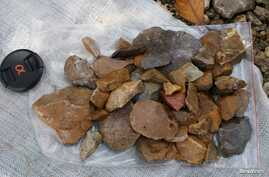 Surface-collected stone artefacts that were found lying scattered on the gravelly surface near Talepu on the Indonesian island of Sulawesi, are pictured in this undated handout photo, Jan. 13, 2016.