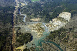 The massive mudslide that killed at least eight people Saturday and left dozens missing is shown in this aerial photo, March 24, 2014, near Arlington, Washington.