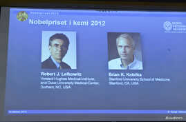Images of researchers Robert Lefkowitz and Brian Kobilka (R) are seen on a projector during a news conference by the Royal Swedish Academy of Sciences in Stockholm, October 10, 2012.