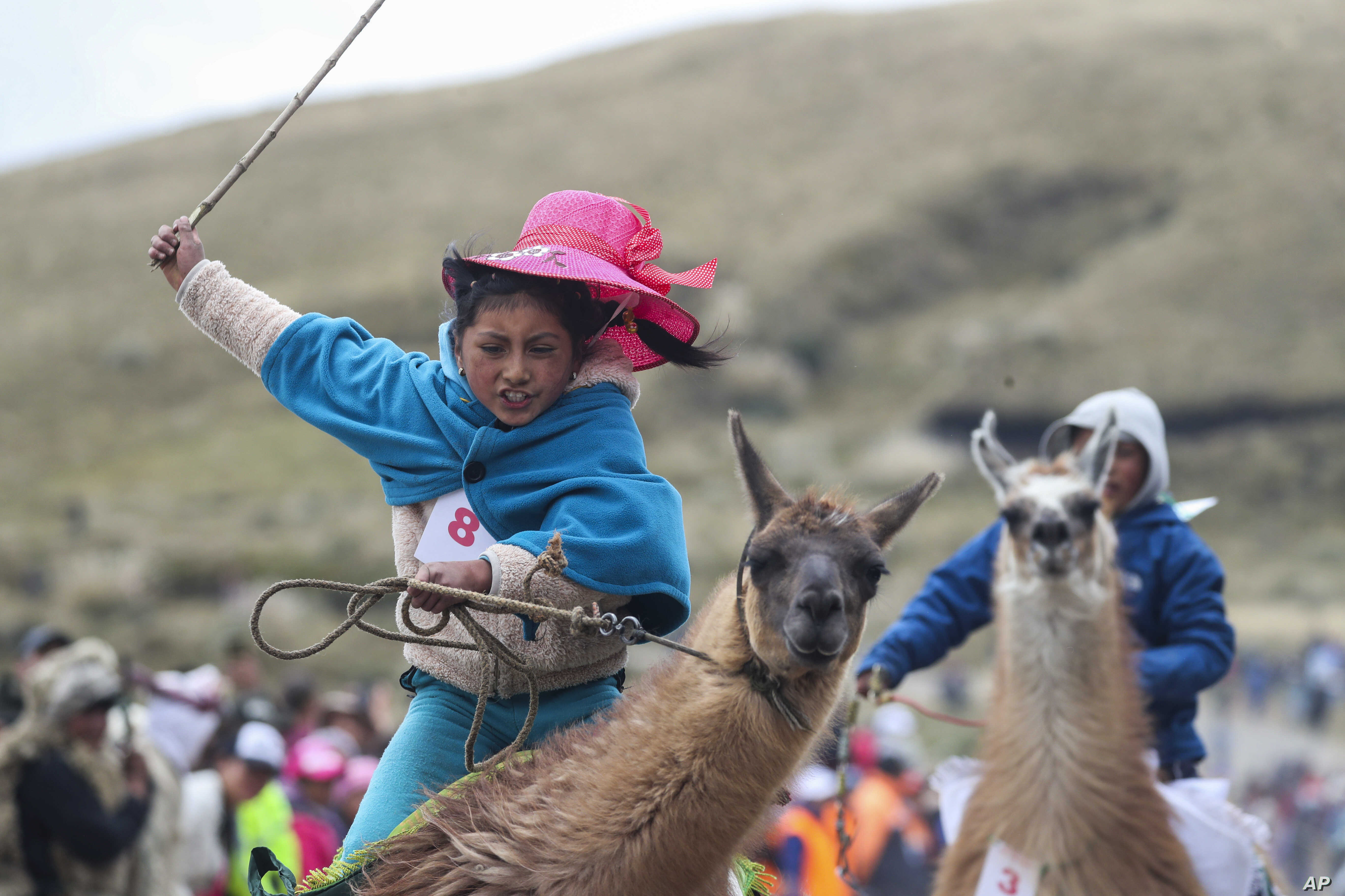 Milena Jami whips her llama to win the first place in the a race for children of ages seven and eight at the Llanganates National Park, Ecuador, Feb. 8, 2020.
