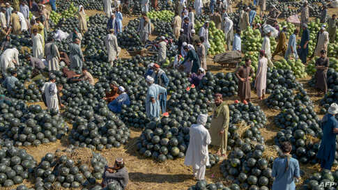 Vendors sell watermelons at a fruit market in Peshawar, Pakistan.