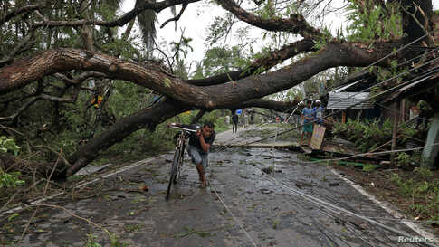 A man walks with his bicycle under an uprooted tree after Cyclone Amphan made its landfall, in South 24 Parganas district, in the eastern state of West Bengal, India.