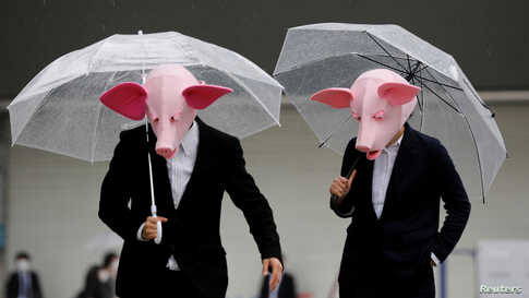 Youtubers wearing masks of pigs film a video at a shopping district in Tokyo, Japan.