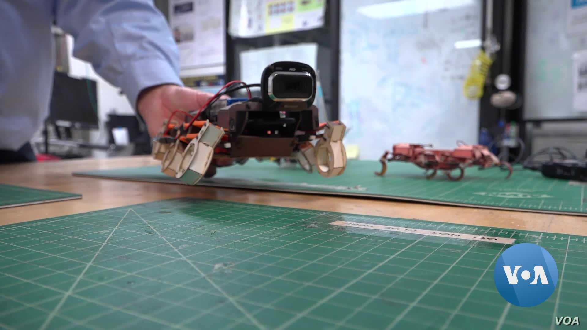 Jumping Like a Lemur, Flying Like a Dragonfly – Robots That Mimic Animal Movements May Be On Their Way